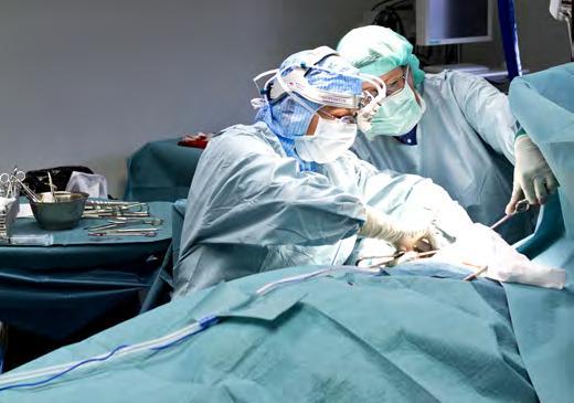 bröstcentrum förbise