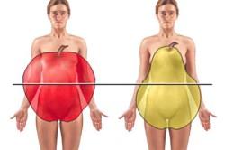 fett stor kön